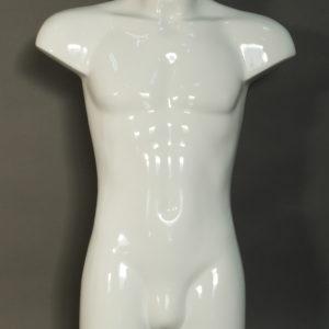 torso male mannequin