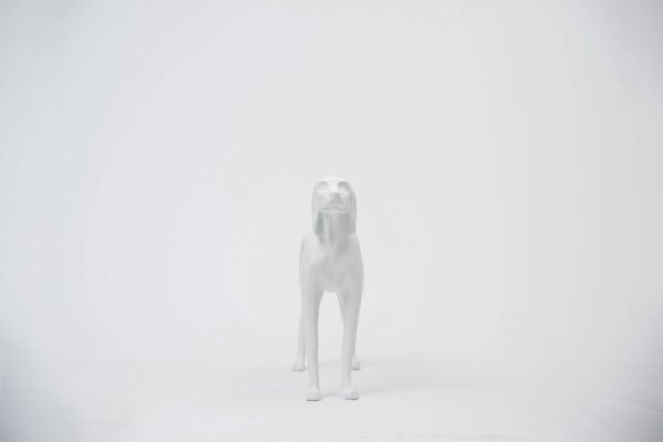 Dog prop 2 _ b