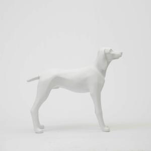 Dog 2 prop
