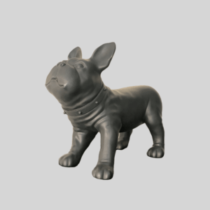 French bulldog puppy prop